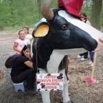 krowa do dojenia gotowa w lesie
